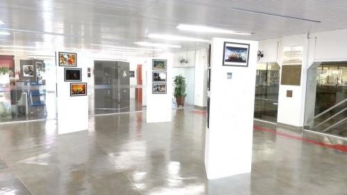 Hall Externo BCCL